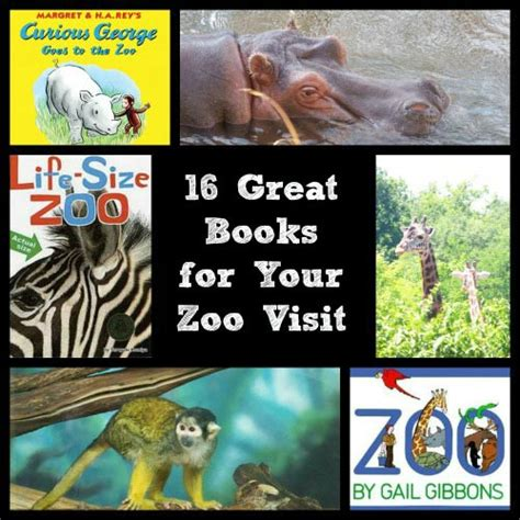 zoo picture book books about the zoo 16 great reads for your visit