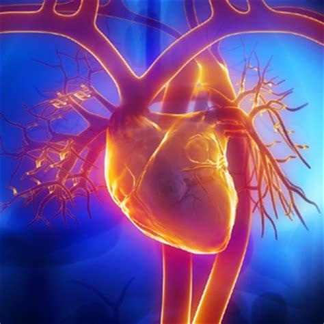 magnesio alimentazione magnesio nella dieta fondamentale per prevenire rischio