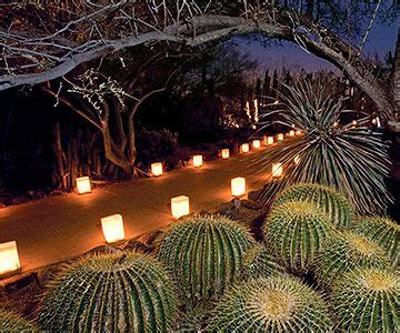 Desert Botanical Garden Luminaries Landscaping Ideas From The Desert Botanical Garden Gardens Receptions And Pathways