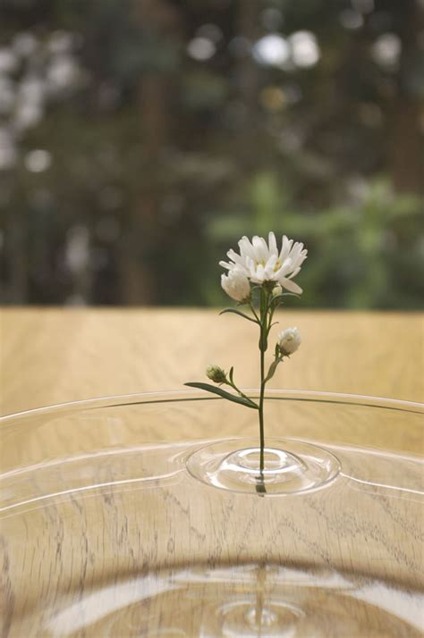 Floating Flowers In Vases by Floating Ripple Vases
