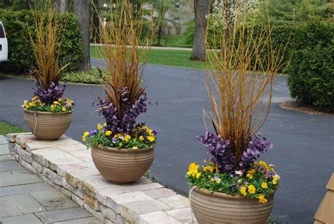 Flower Pot Arrangements For The Patio by Yellow Twig Dogwood Branches Fall Containers