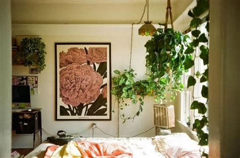 bedroom with plants gypsy yaya plants in the bedroom