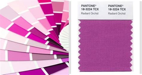 what color match purple collage 2 radiant orchid purple color radiant orchid the kim chronicles