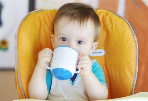 ab wann kleinkind ab wann aus dem becher trinken schnabeltasse