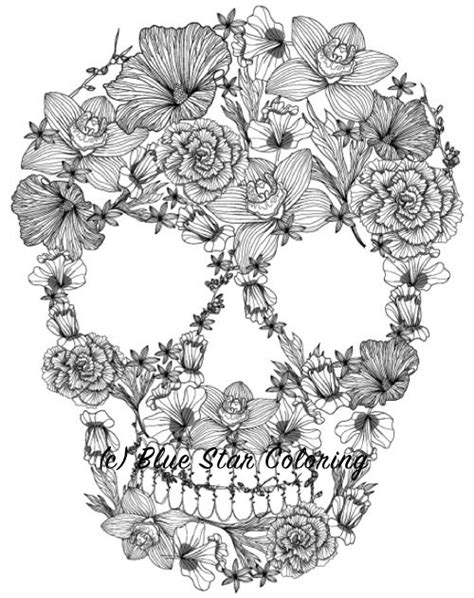 dia de los muertos coloring book best coloring books for adults cleverpedia