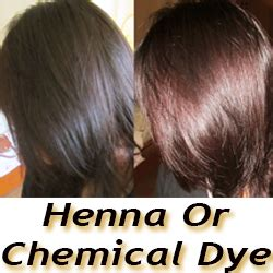 where to buy henna hair dye for gray hair what s better for gray hair henna or chemical dye gray