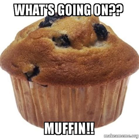 Whats Going On Meme - what s going on muffin make a meme