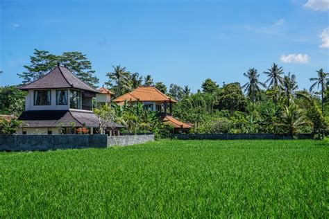airbnb dieng dieng plateau sunrise and diy walking tour java finding