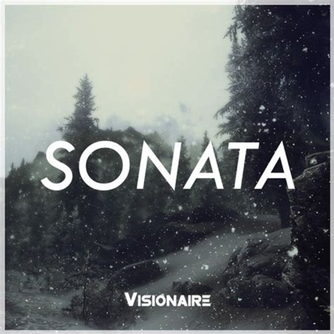 sonata music house visionaire sonata original mix edm assassin