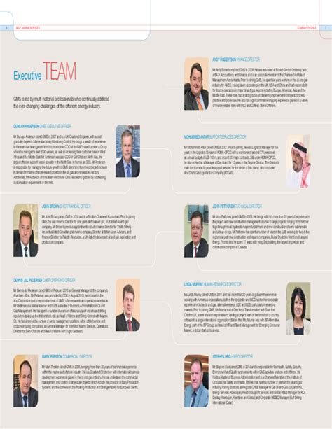 Professional Company Profile Sample Free Download