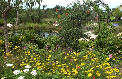florida native plant society blog the truth about butterfly gardening part one