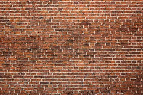wall photo royalty free brick wall pictures images and stock photos
