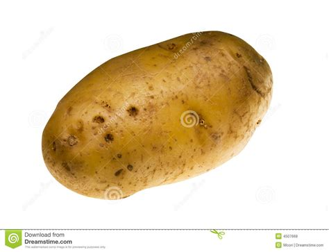 potatoe stock photo image of ingredient brown grow