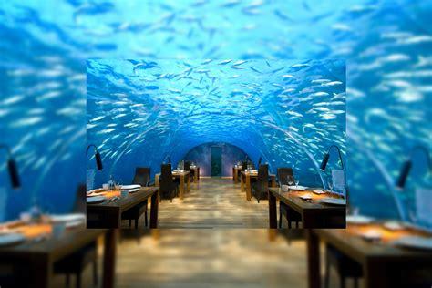 pics photos ithaa undersea restaurant best free home pics photos ithaa undersea restaurant best free home
