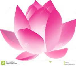 Lotus Touts Fleur De Lotus Photos Libres De Droits Image 5055128