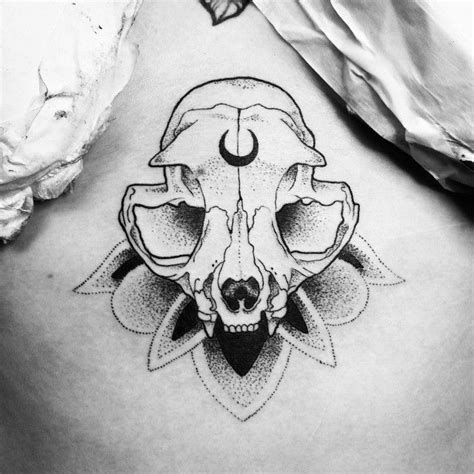 cat skull tattoo cat skull drawing www pixshark images