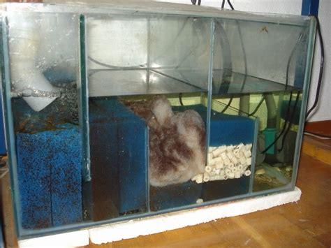 Pompa Aquarium Hai filtration pour aquarium eau de mer