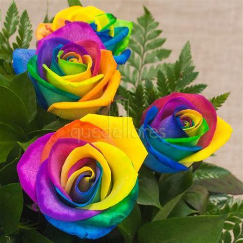 imagenes rosas de todos los colores las rosas rainbow o rosas arco iris