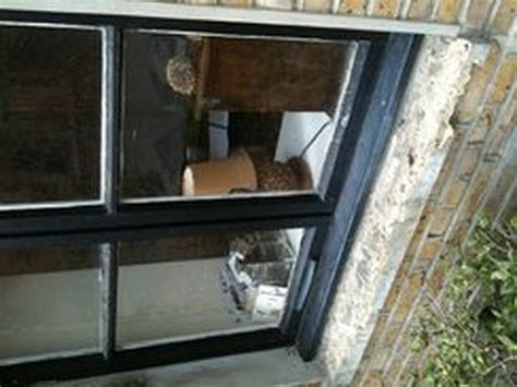 Replace Exterior Window Sill Replace 2 Crumbled Concrete Exterior Window Sills