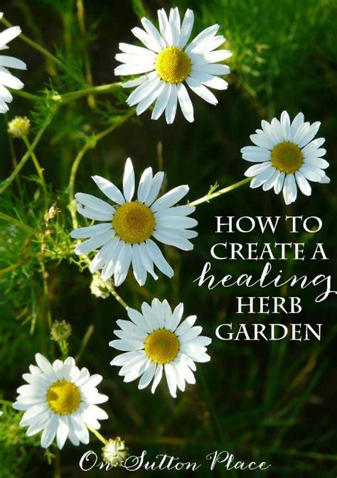 how to start your own herb garden activist awake diy container herb garden ideas