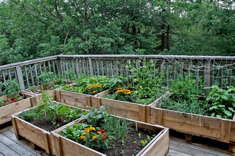 diy vegetable garden boxes from upcycled shipping crates