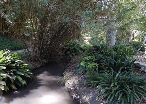 10 Hidden Spots To Check Out Around Westwood For An Epic Mildred E Mathias Botanical Garden