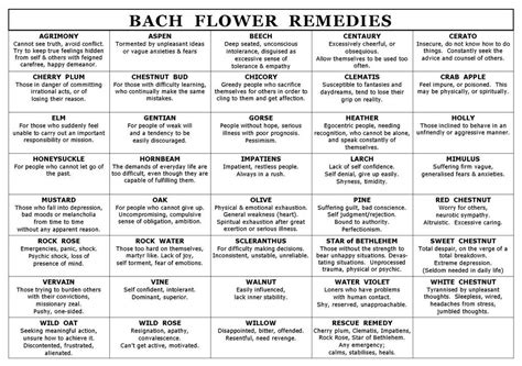 remedy fiori di bach bach flowers products averybigopportunity