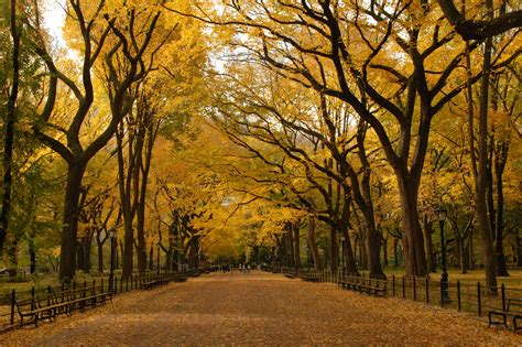 35 reasons why autumn is awesome