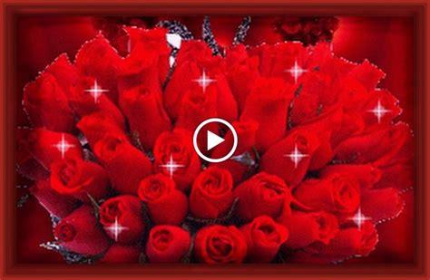 imagenes rosas animadas inigualables fotos de rosas rojas con frases de amor