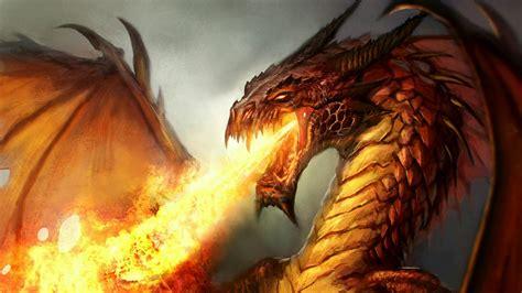 firebreathing dragon hd wallpaper wallpaper studio