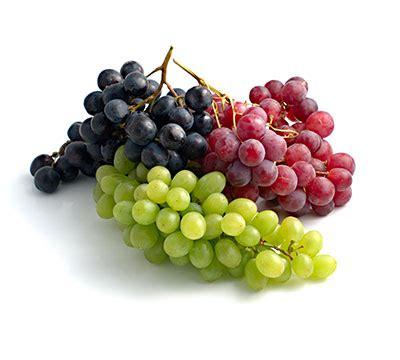 uvas silvestres imagenes vinos por tipo de uva todo liverpool en un click