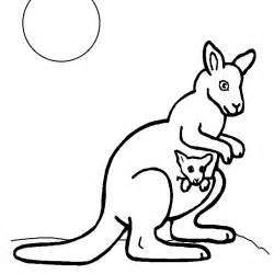 coloriage kangourou a imprimer gratuit