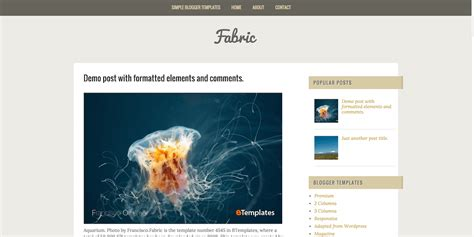 Top 30 Best Free Responsive Blogger Templates 2018 Colorlib Fabric Website Templates