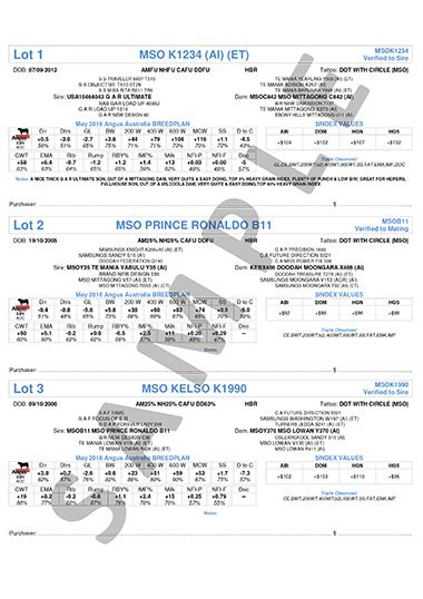 sale catalogue templates angus australia