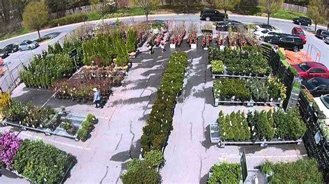 home depot garden center  maryland youtube