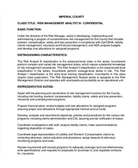 Risk Analyst Description risk management description sle 8 exles in word pdf