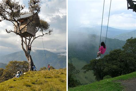 la casa del arbol swing amazing tiny treehouse boasts the world s wildest swing