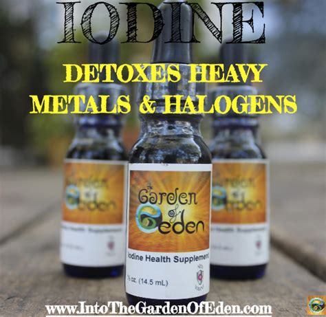 Fluoride Detox Symptoms Iodine by Iodine An Essential Nutrient And Holistic Option For