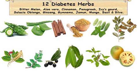 Diskon Teh Herbal Diabetes Diabetea Insuline 12 diabetes herbs to blood sugar diabetes herbal