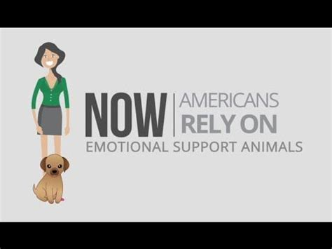 Buy Emotional Support Animal Letter 25 Best Ideas About Emotional Support Animal On Service Service Dogs