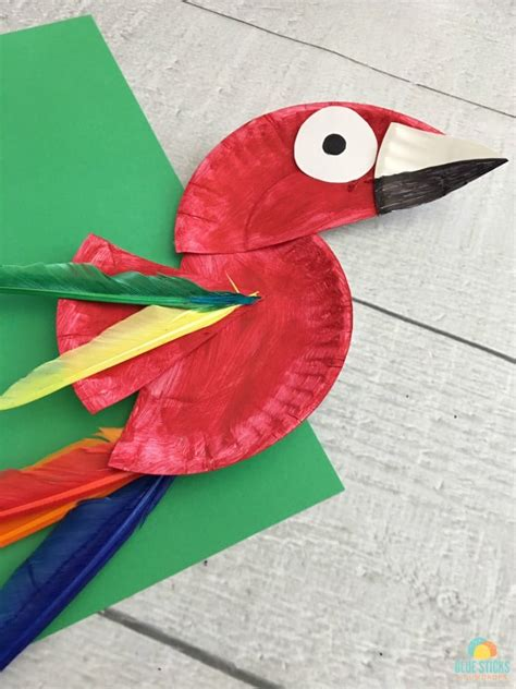 paper plate parrot craft parrot paper plate craft for rainforest craft idea