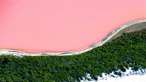pink wallpaper melbourne beautifulnow is beautiful now 10 amazing pink lakes to