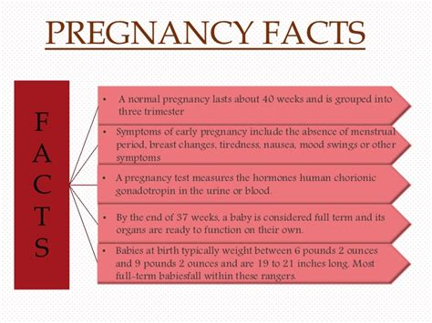 when to expect period after c section menstrual cycle after c section 92 first period after c