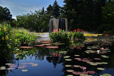 Iwgs Competition Pond At Denver Botanic Gardens Botanic Garden Denver