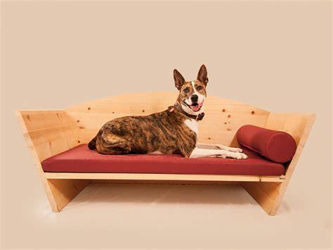 hunde betten insekten hassen zirbenholz naturduft vertreibt motten und