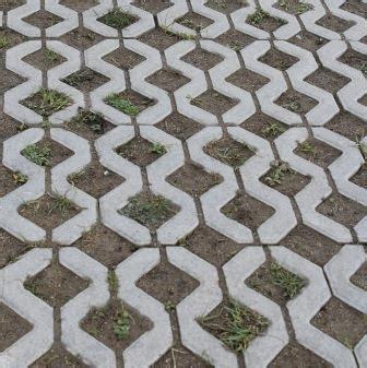 Farbe Pflastersteinen Entfernen by Unkraut Und Moos Aus Pflasterfugen Entfernen Garten Pflanzen