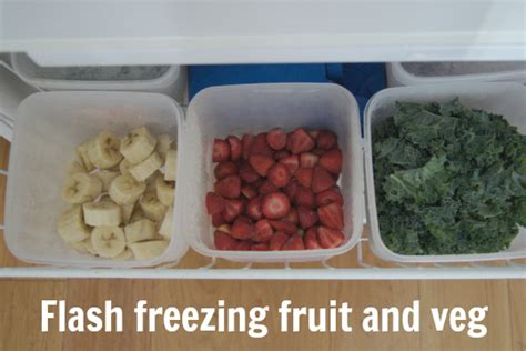 flash freezing fruit and veg planning with kids