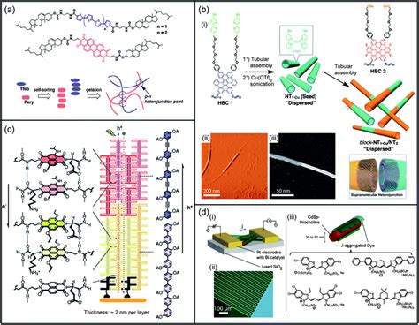 impact of the supramolecular structure of cellulose on the supramolecular self assemblies as functional nanomaterials