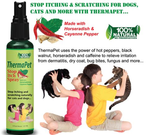 spray to keep dogs from pooping in house sprays to stop dogs from in the house 28 images fido s chew stop bitter spray and