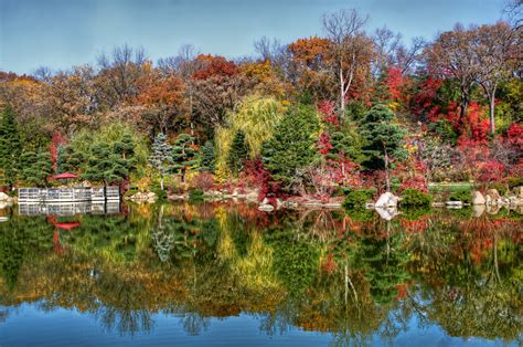 japanese gardens botanic garden in illinois